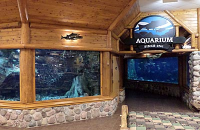 A trip to cabelas in dundee michigan for Cabelas fishing nets